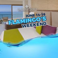 Flamingo's Weekend
