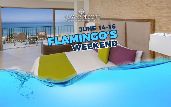 Flamingo's Weekend