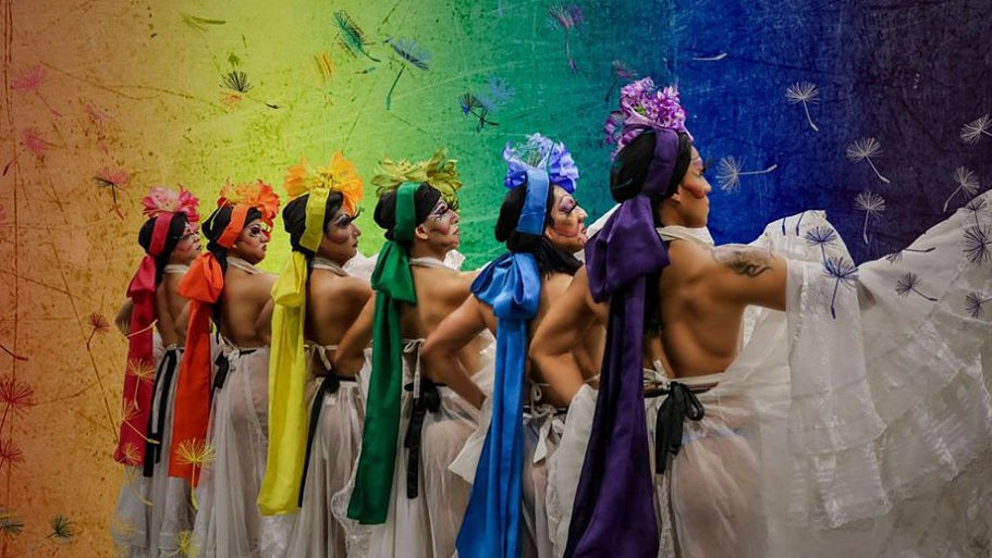 Mexico of Colors dances for the LGBT rights