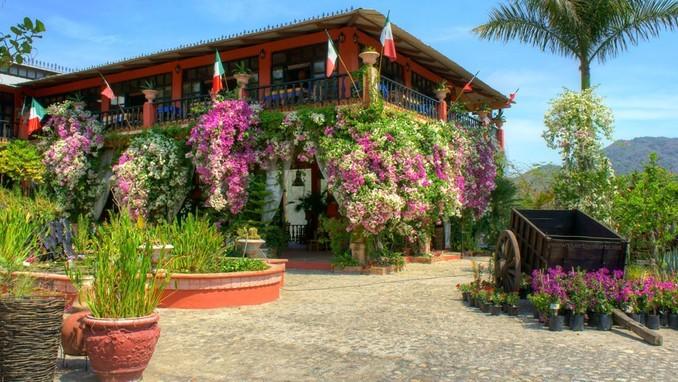 Conoce el Jardín Botánico de Vallarta